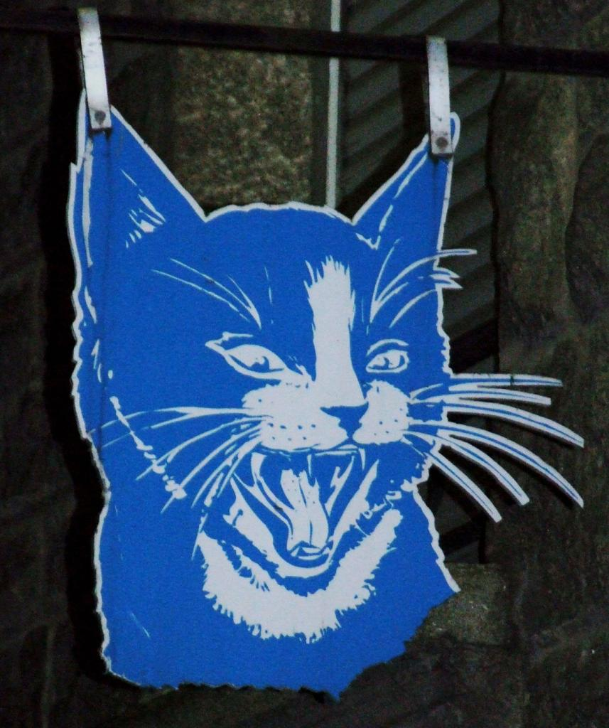 Le Chat Bleu Cadeaux Saint Malo