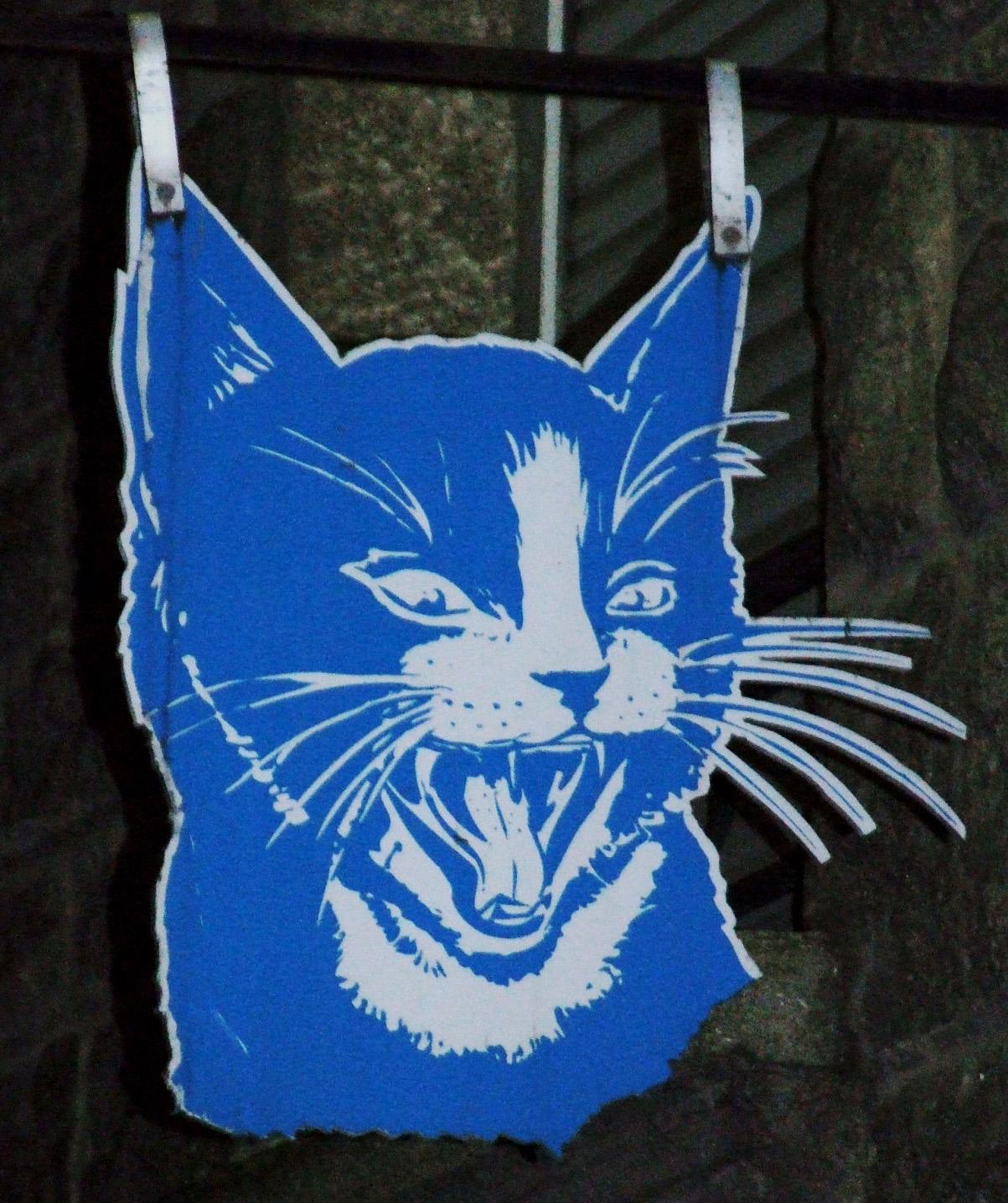 Le chat bleu (cadeaux)